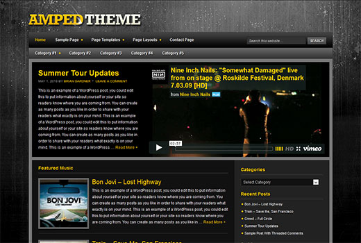 best WordPress theme for video site