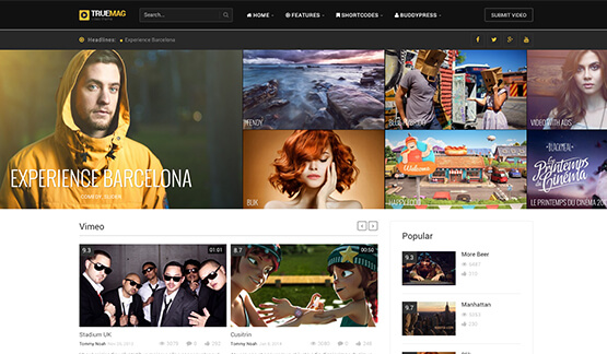 best wordpress themes for video