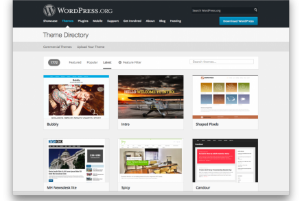 featured wordpress video blog themes
