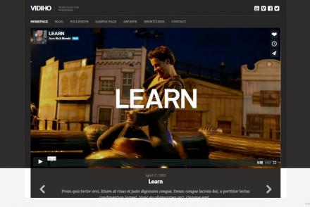 video themes WordPress 2015 8
