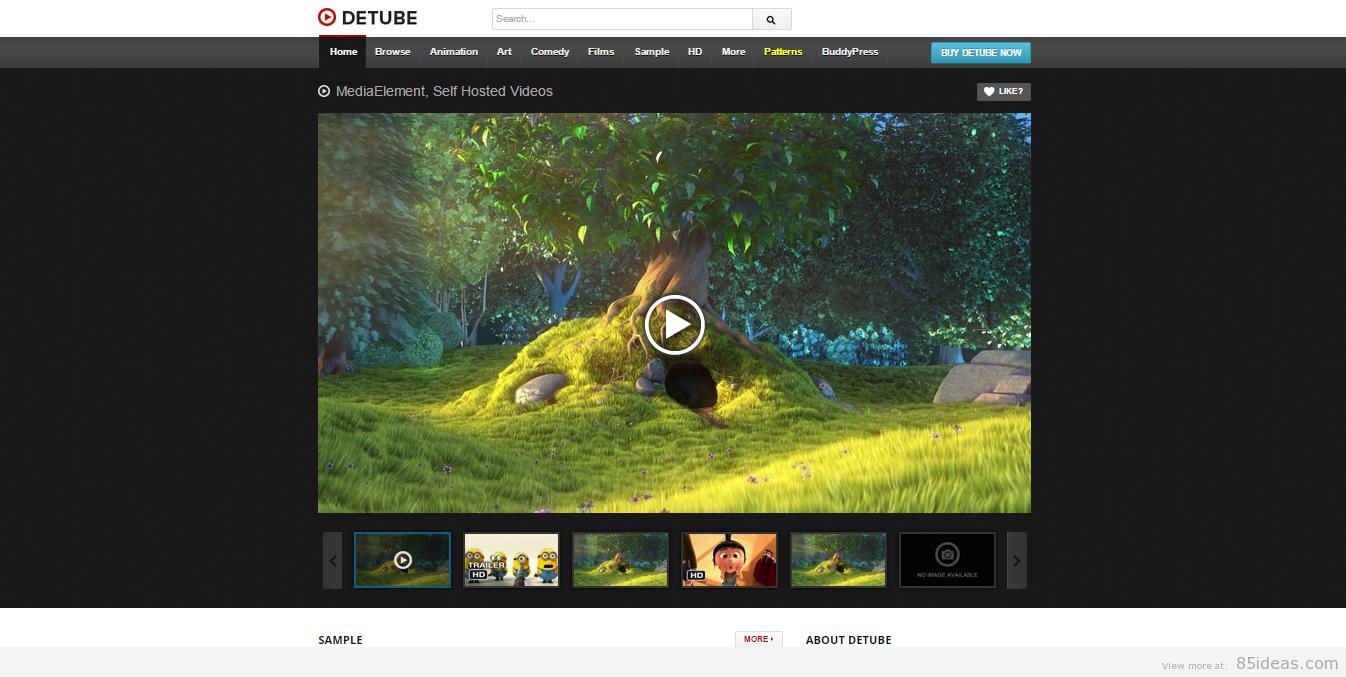 video themes WordPress 2015 9