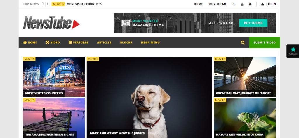 NewsTube wordpress video themes responsive