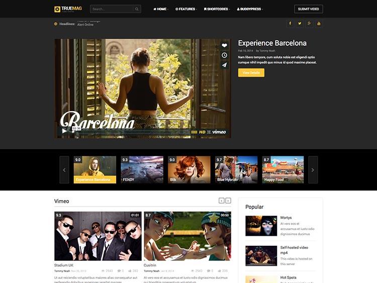 video theme WordPress 2015 1