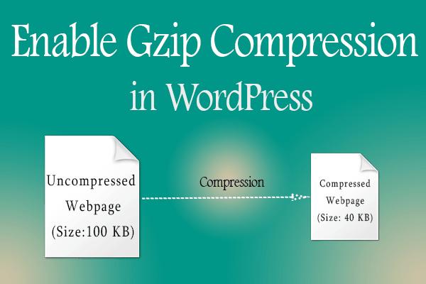 WordPress theme for videos 1