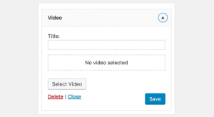 Wordpress Video Widget